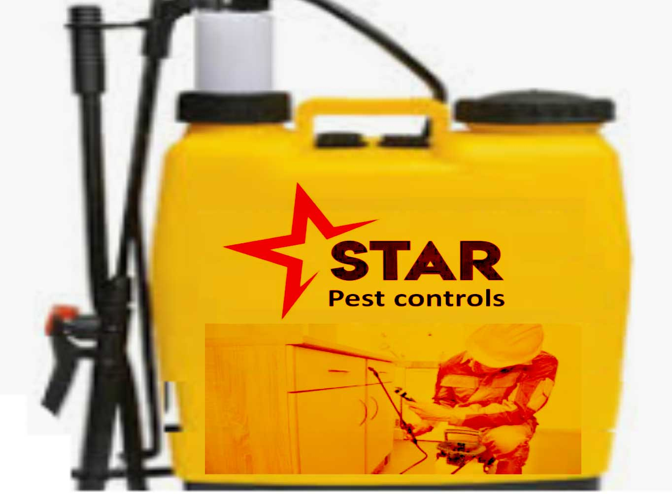 Fumigation for pest control